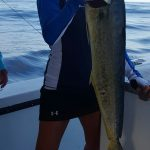 Mahi Mahi on the Incentive